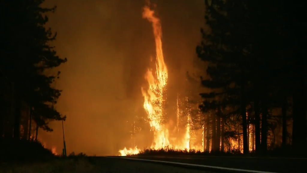 Hog Fire Grows to 12,00 Acres as it Moves Closer Towards ...